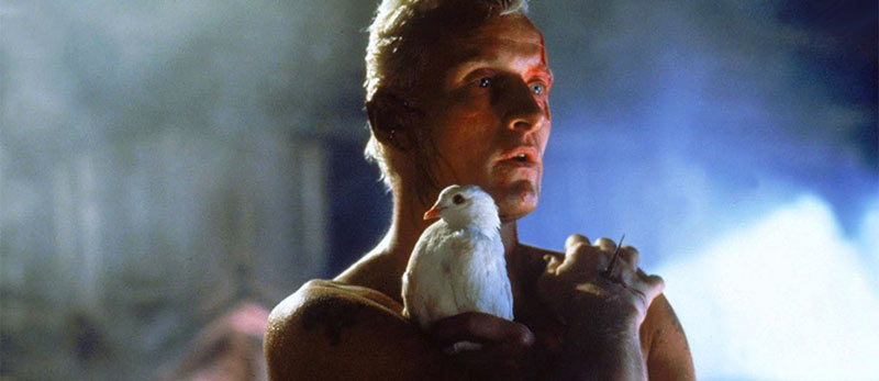 Roy Batty in Blade Runner scena finale