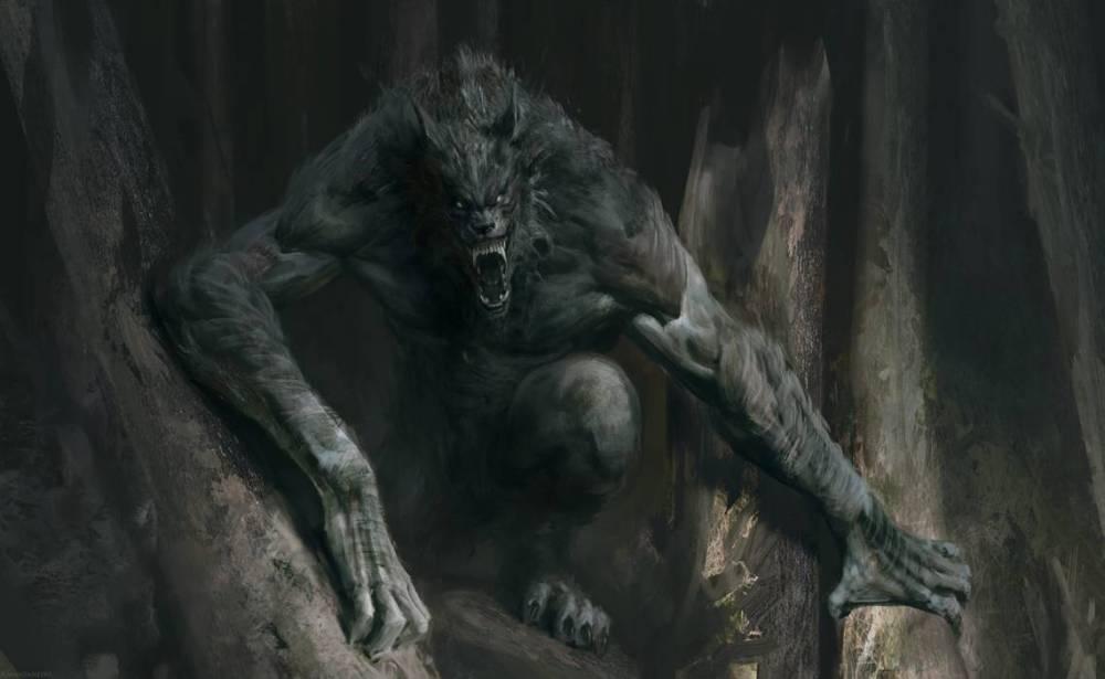 Disegno del lupo mannaro di Ravello