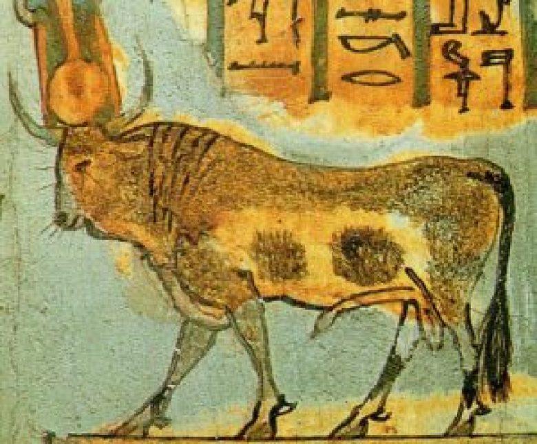 Api antico Egitto dio toro