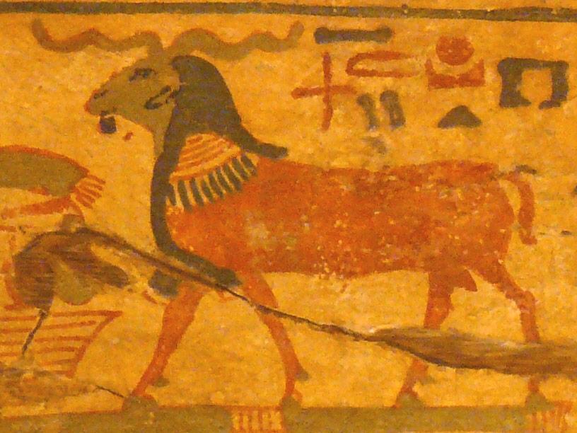 Kherti capra divinità egitto