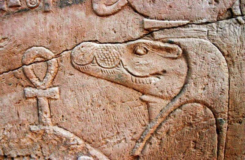 Sobek egitto muro coccodrillo