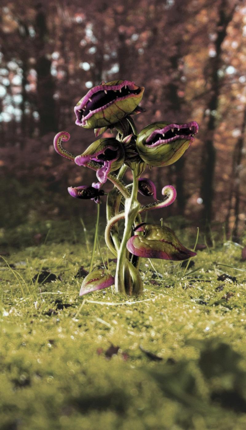Effetto parallax pianta carnivora adulta