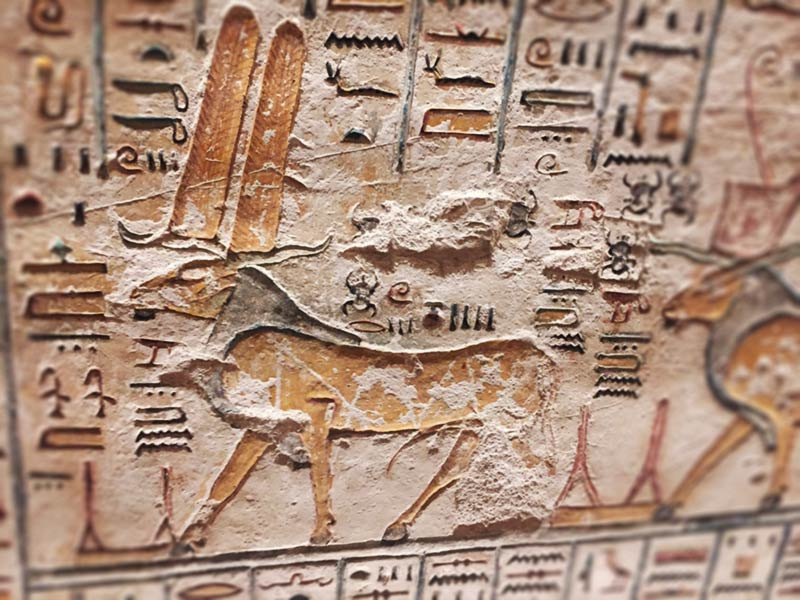 Ariete su parete Amon-Ra