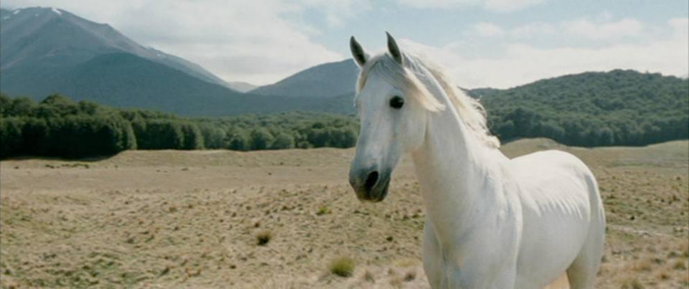 Signore degli Anelli cavallo Mearas Ombromanto
