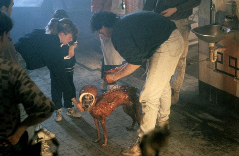 Alien 3 cane sul set