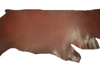 burgundy latigo, thoroughbred latigo, saddle latigo