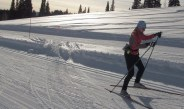 Try Both Nordic Track Ski Techniques