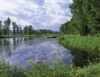 Nature On the Wing: Lee Metcalf National Wildlife Refuge