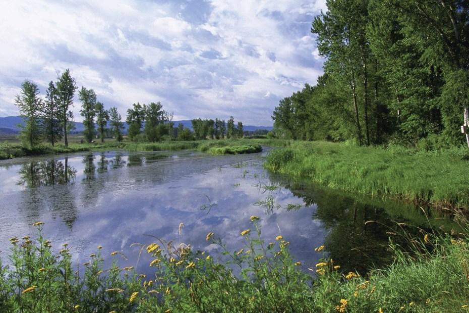 MSN 345 - Lee Metcalf National Wildlife Refuge