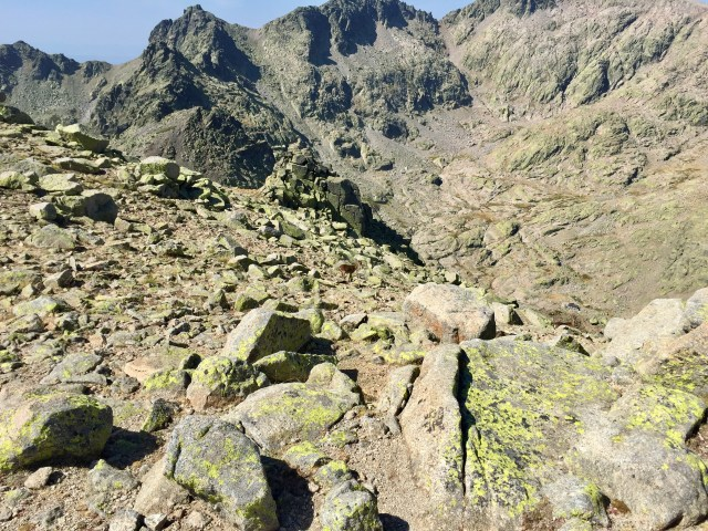 En el centro, un rebeco y abajo a la derecha, el Refugio Elola.