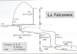 falconera2