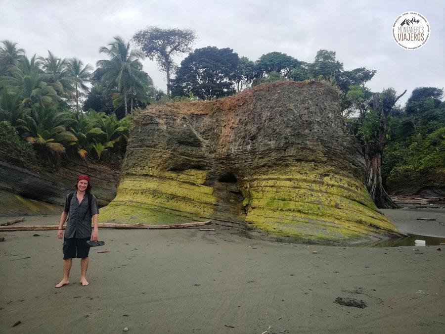 ballenas-jorobadas-en-colombia