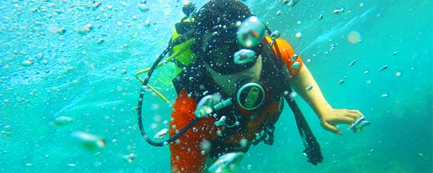 Seaworld Divers Montego Bay