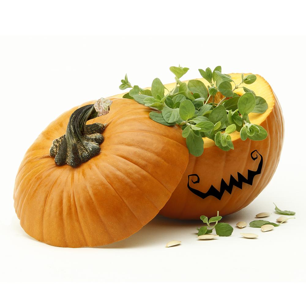 Halloween dulce