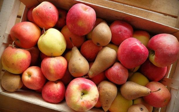fruits-bio