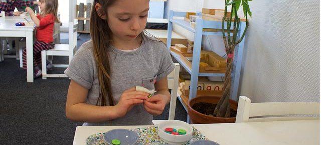 Matériel Montessori de vie pratique de printemps