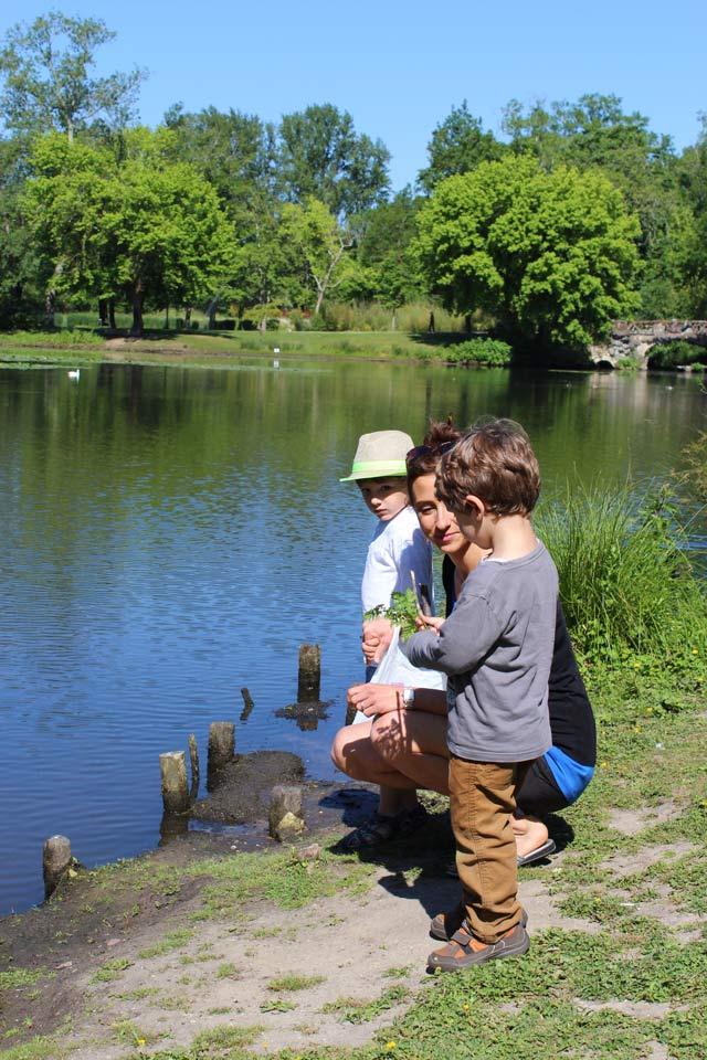 étang enfants - parc Majolan - école Montessori Internationale Bordeaux