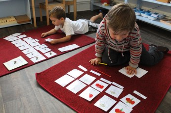 carte nomenclature montessori