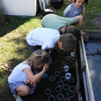 jardin montessori bordeaux
