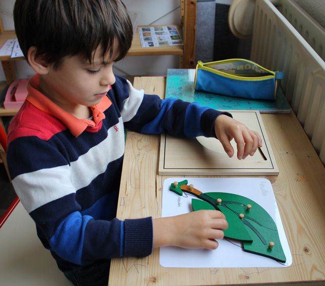 montessori puzzle feuille