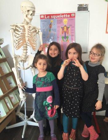 sciences concret montessori international bordeaux