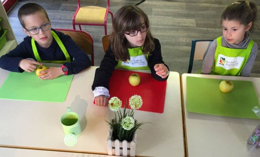 sensoriel montessori international bordeaux 12
