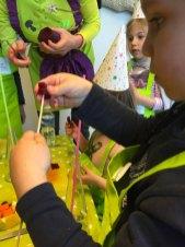 sensoriel montessori international bordeaux 15