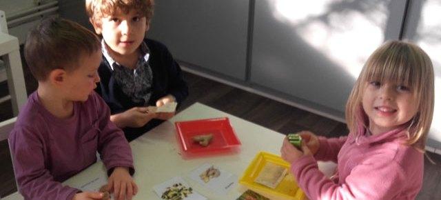Atelier Montessori : les goûts et les odeurs