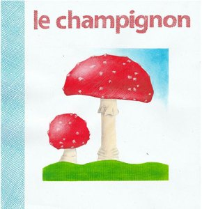 montessori international bordeaux champignons 25