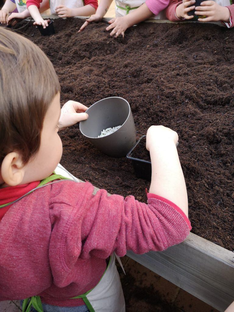 montessori international bordeaux jardinage 5