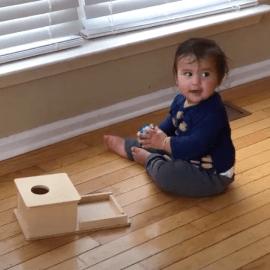 How to Present the Montessori Object Permanence Box