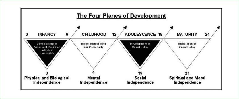 Montessori-4-Planes-Of-Development