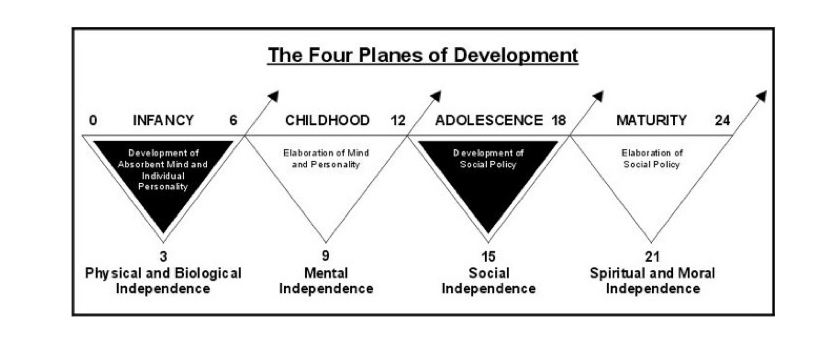 Montessori-4-Planes-Of-Development