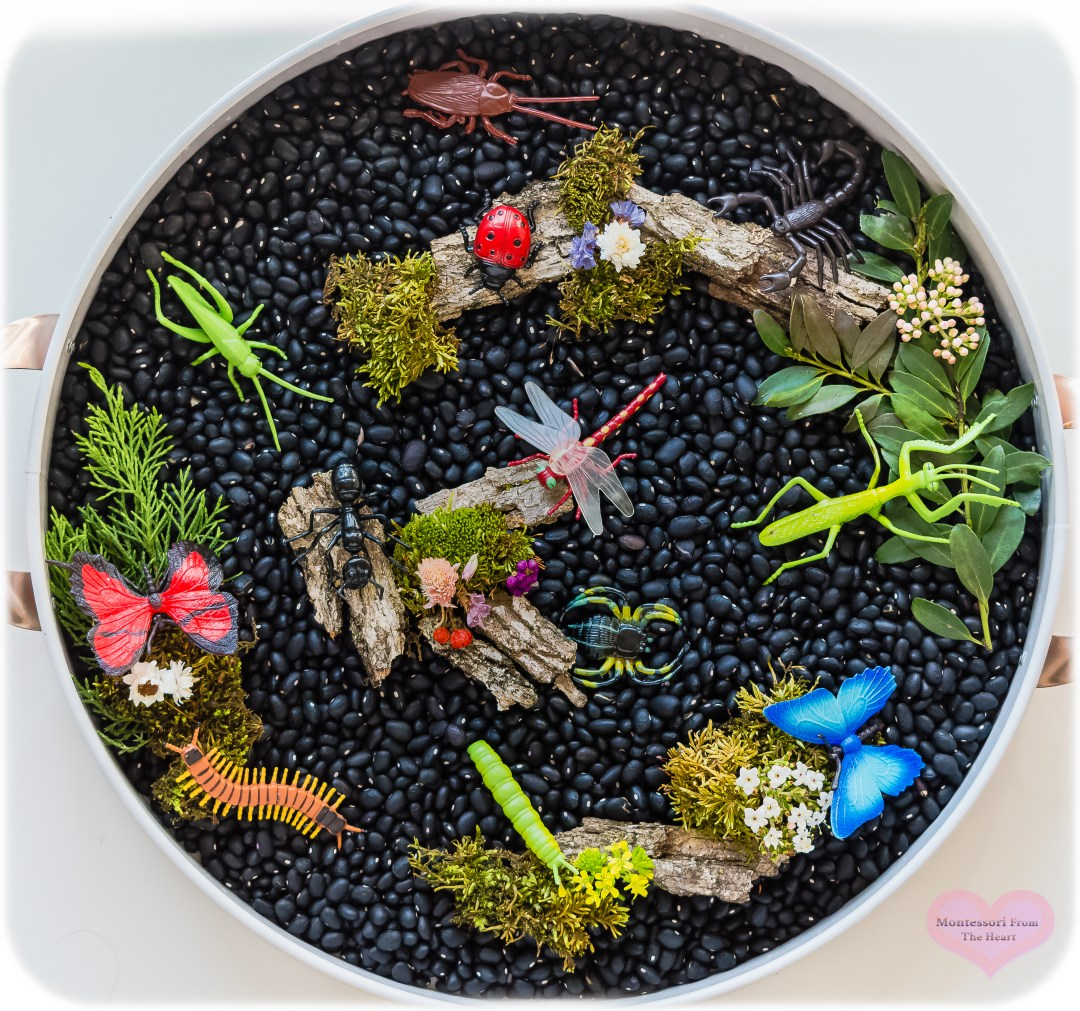 SafariLtd-Insects-TOOBs-Black-Bean-Kmart-Play-Tray