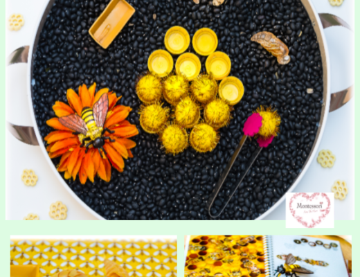 BEE Homeschool Kids Activities