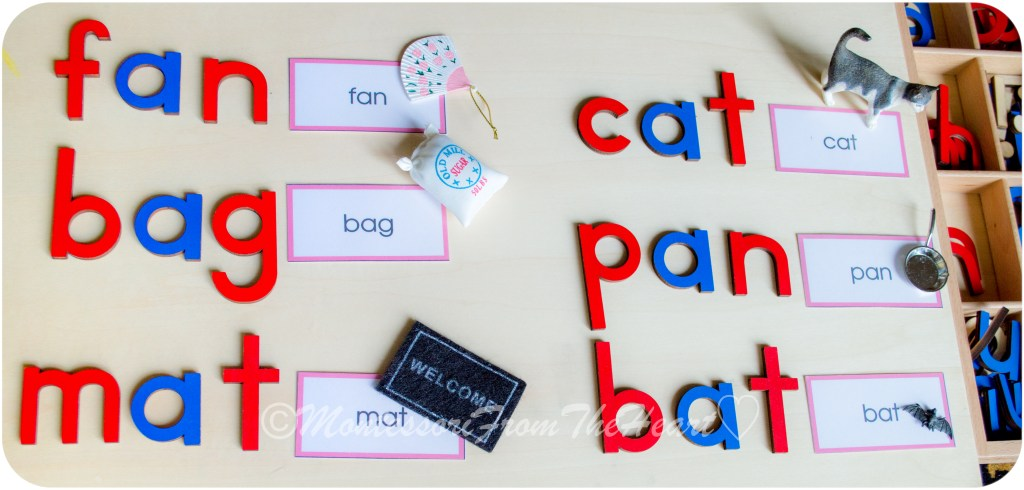 CVC-a-sound-Montessori-Language