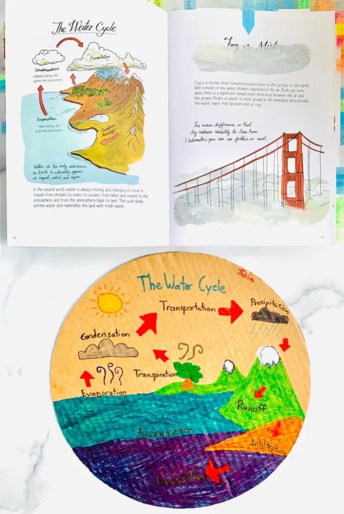 WATER-CYCLE-ELEMENTARY Kids Activity Recycled DIY