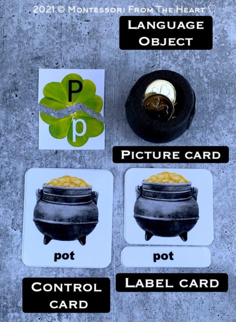 Montessori 3-Part Cards