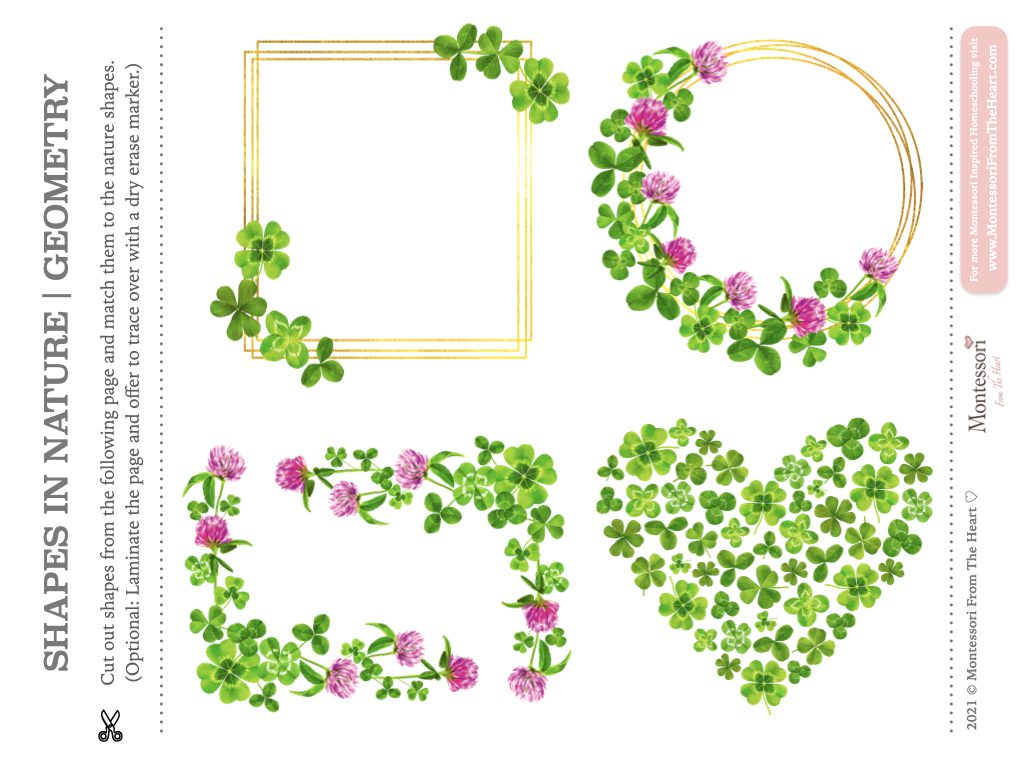 Clover SHAPES in NATURE