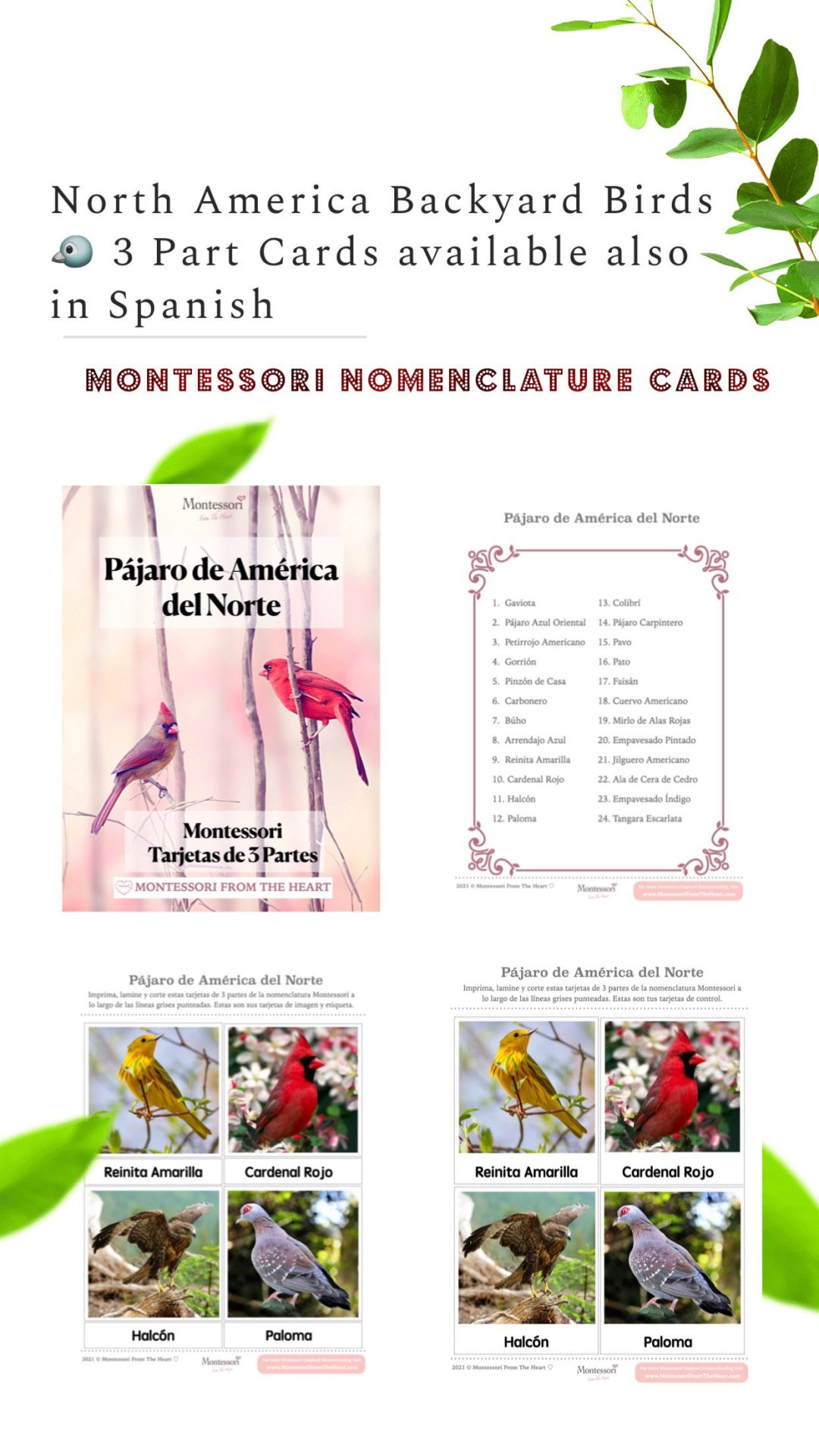 *BIRD North America 3-part Card Spanish