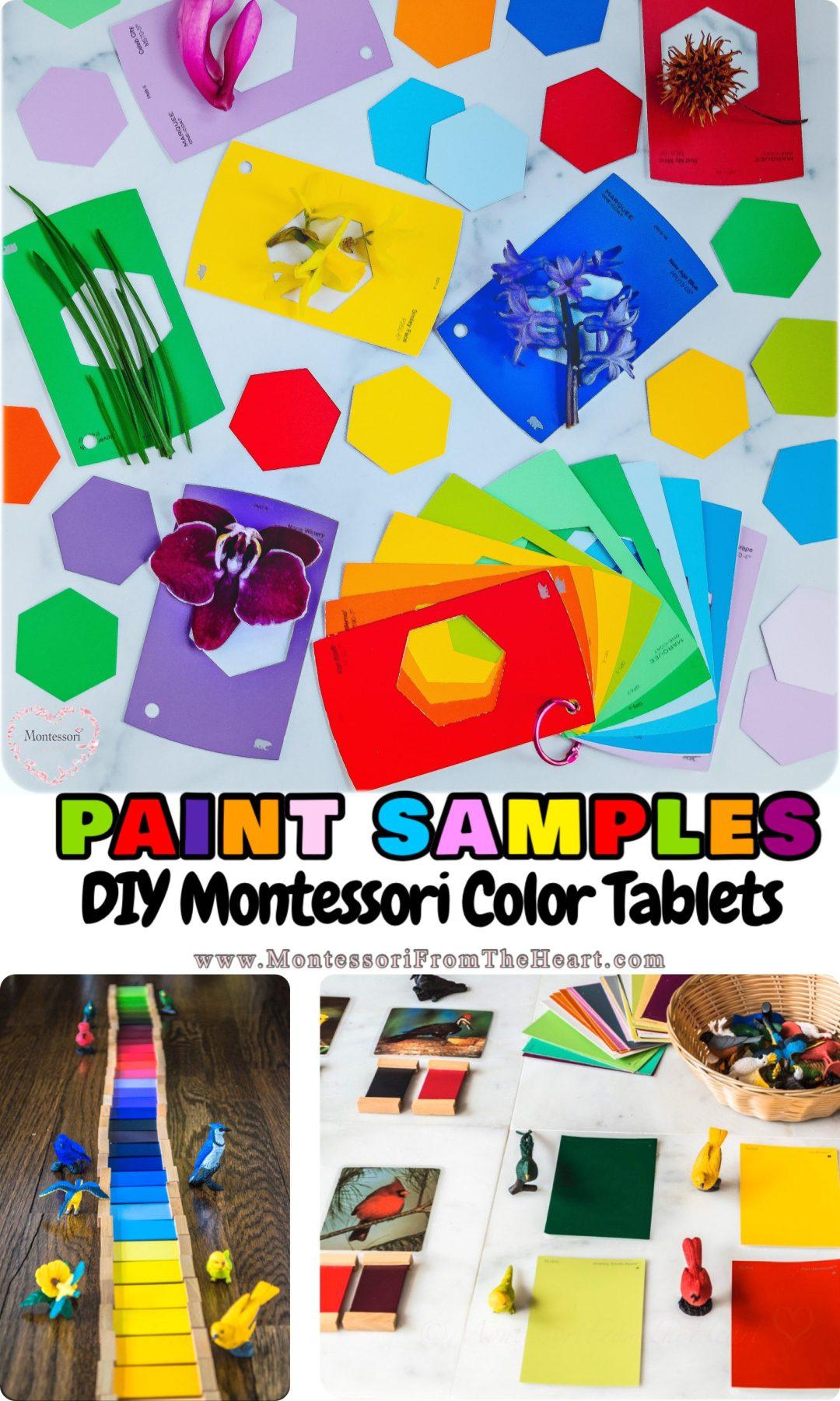 *DIY-Paint-Samples-Montessori-Color-Tablets-SafariLTD-Birds-Matching