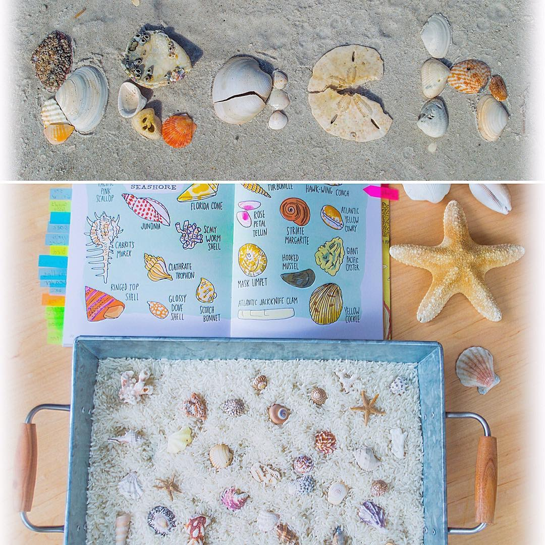 Spelling with Shells