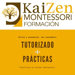 Tutorizado y prácticas. Curso Montessori