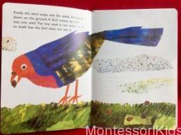 Eric Carle: Maličké semienko