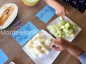 Testujeme melóny