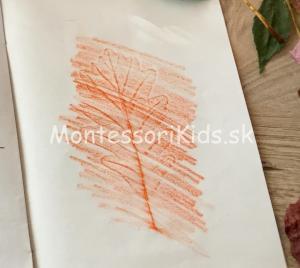 Jesenné tvorenie z listov