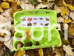 Hľadanie jesenných pokladov