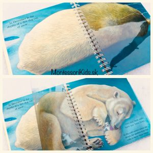 Knihy o Arktide