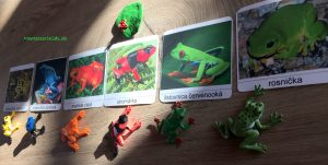 žaby Safari vrecúško