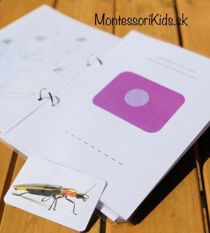Moja hádanková knižka hmyz